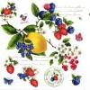 Фрукты и ягоды (49)