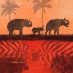 Азия и Африка