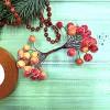 Ягоды и фрукты (1)