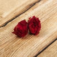 Сухоцветы. Розы 3-4 см. (5шт.)